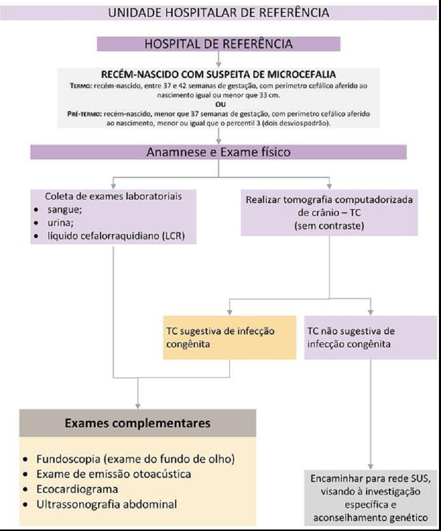 Exame de citomegalovirus