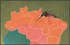Destaque Secundario Aedes Zika