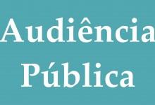 Audiencia Publica 2